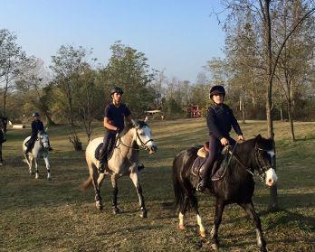Cavalli, maneggi, equitazione Ivrea e dintorni - bed & breakfast l'aBBaino