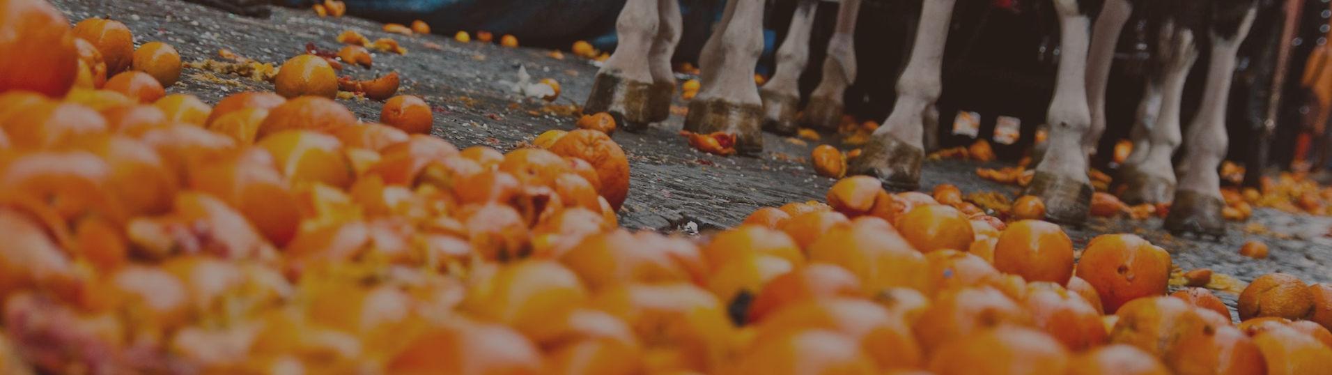 Storico Carnevale di Ivrea - b&b l'aBBaino