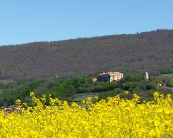 Serra Morenica - bed & breakfast l'aBBaino