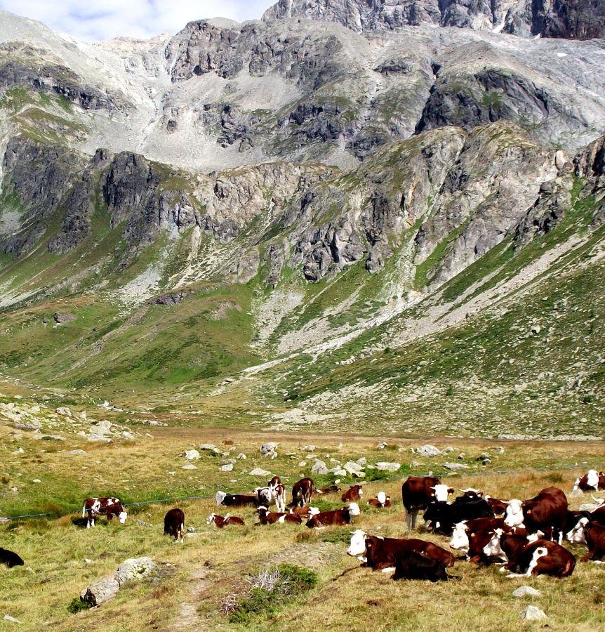 valle-aosta-LucaMurla